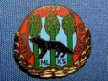 Odznaka 2