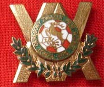 odznaka-5