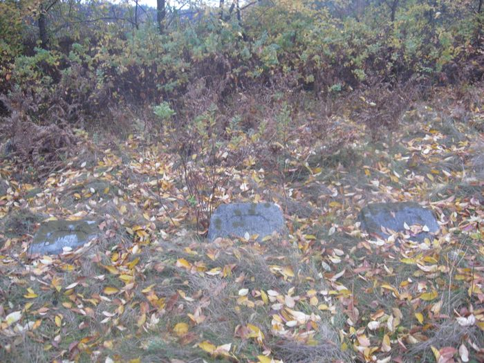 Nagrobki w zielsku i opadłych liściach