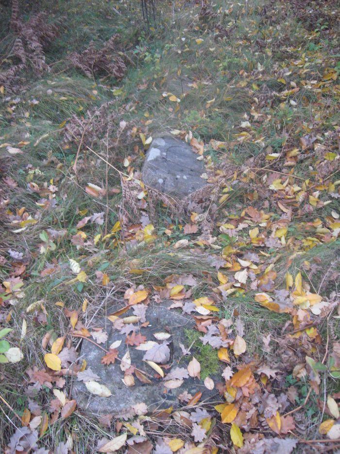 Nagrobki w zielsku i opadłych liściach 2
