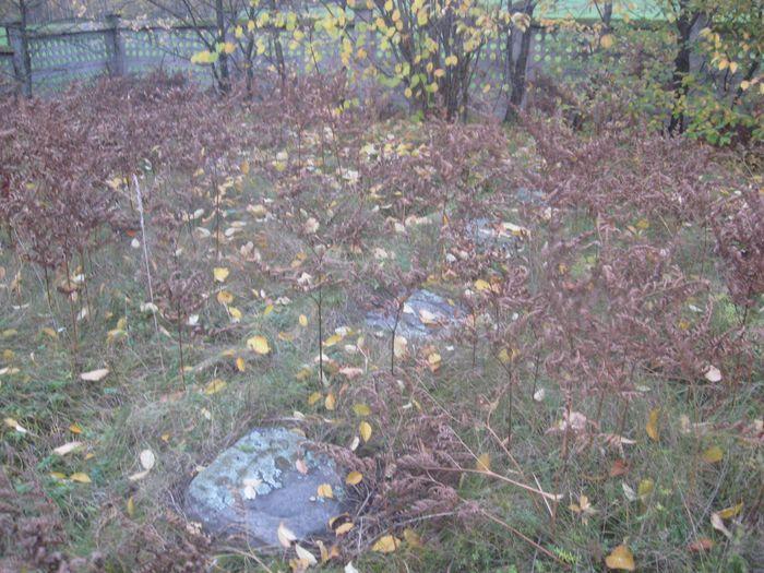 Nagrobki w zielsku i opadłych liściach 4