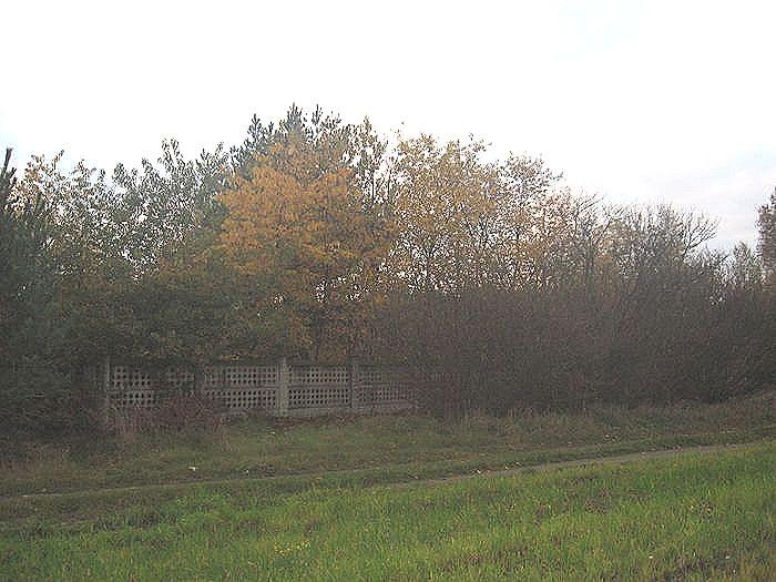 Widok na cmentarz od strony wschodniej
