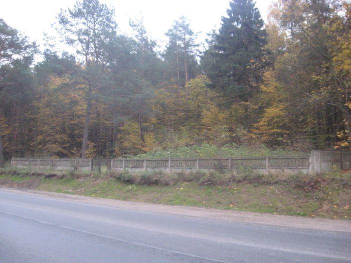 Cmentarz od Szosy Ostrołęckiej
