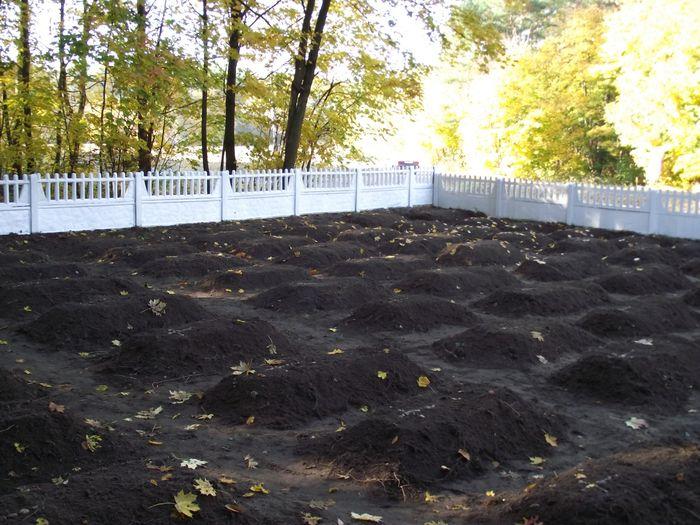 Groby na cmentarzu w Sierzputach Młodych 2