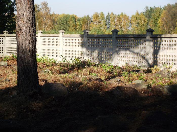 Ogrodzenie cmentarza w Chojnach Młodych