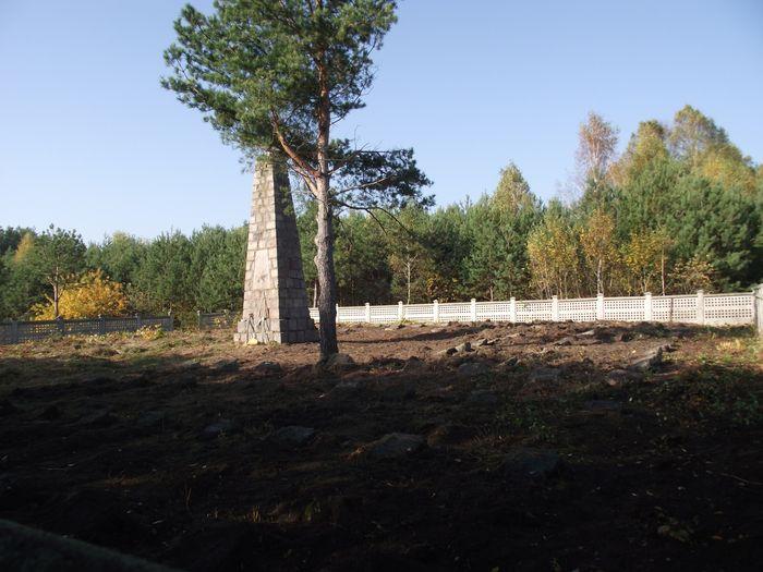 Uporządkowany cmentarz w Chojnach Młodych