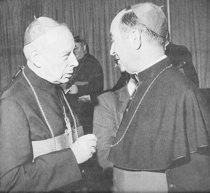 W rozmowie z jednym z biskupów niemieckich podczas synodu biskupów w Rzymie w 1971 r.