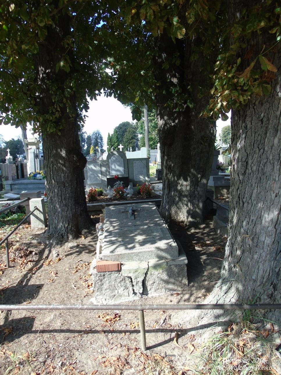 Bezimienny grób zawierający szczątki doczesne generała armii carskiej i polskiej Stanisława Suryna, który zmarł w 1928r W tle grobowiec, w którym są pochowane trzy córki generała.