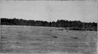 casem podniosą się spłosone, to niebo się robi jak w wiecór. Fot.1931 r.